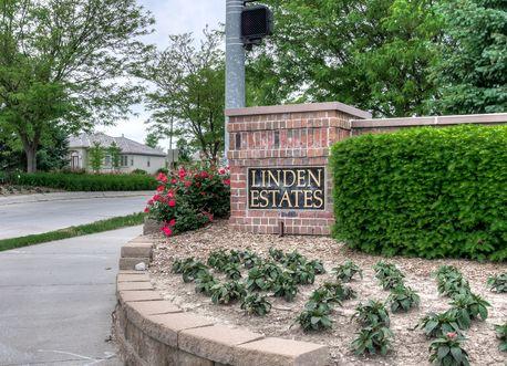 Lindens