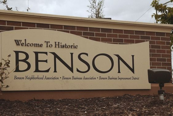 North Benson Real Estate