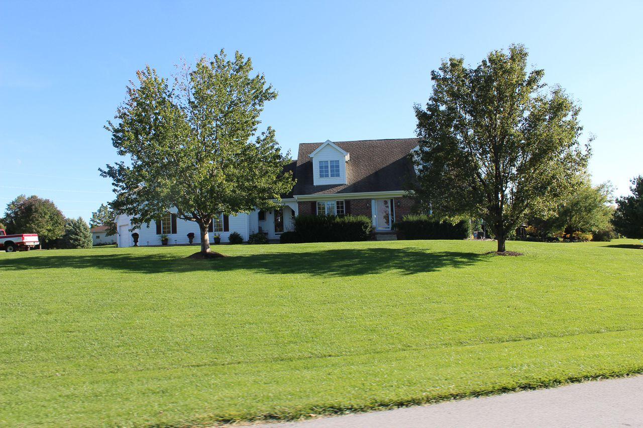 Trail Ridge Ranches Real Estate