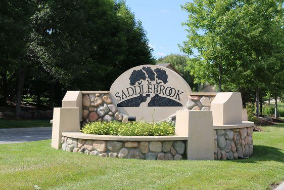 Saddlebrook Real Estate