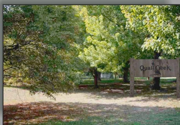 quail creek 4.jpg