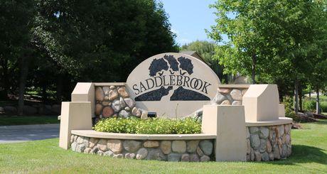 Saddlebrook