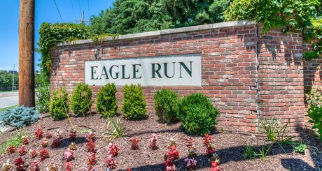 Eagle Run
