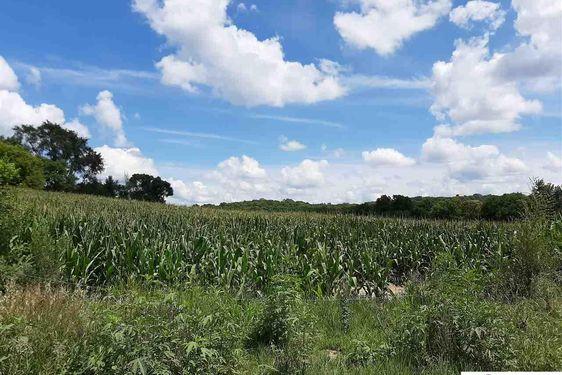 P39 92.61 Acres - Photo 3