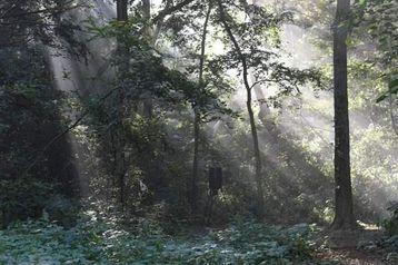 2156 Loess Hills Trail Missouri Valley, IA 51555 - Image 1