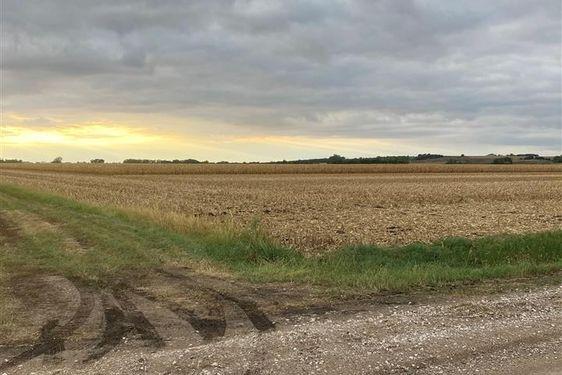 TBD 19 County Road - Photo 3