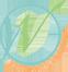 Mary Chapman Logo